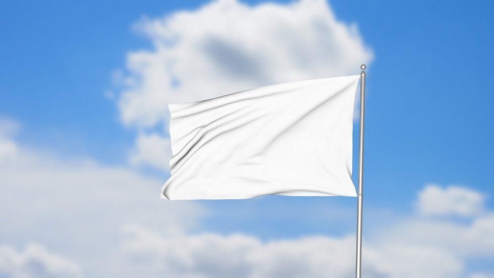 01-flag-mockup-template