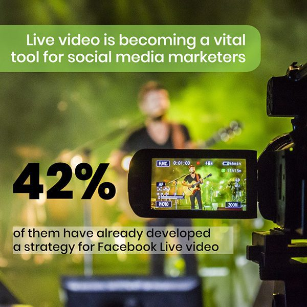 13-video-marketing-data-facts-template
